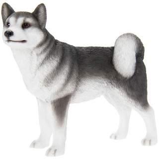 Husky -patsas
