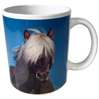 Hevonen -muki